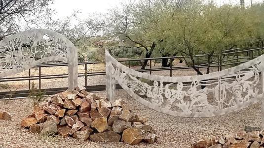 Wild Desert Majesty, detail